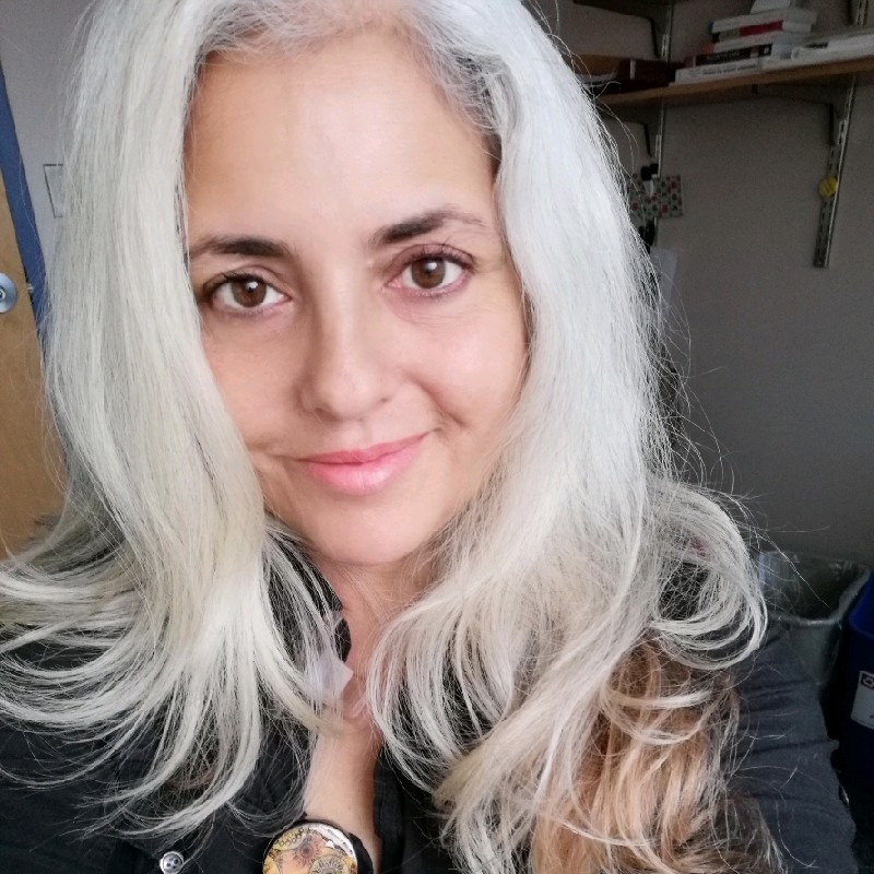 Ana Bulnes